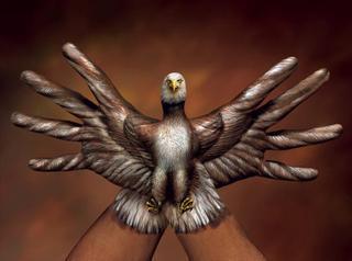 Fpbird1