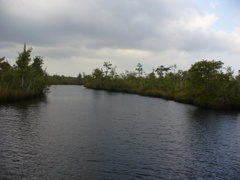 The_st_marys_river