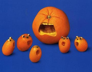 Oranges_aghast