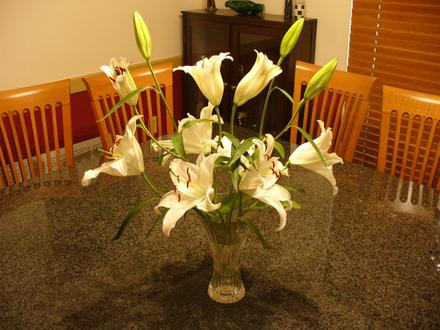 Lilies_days_later