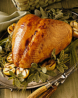 Bbq_brined_whole_turkey_breast_recipe